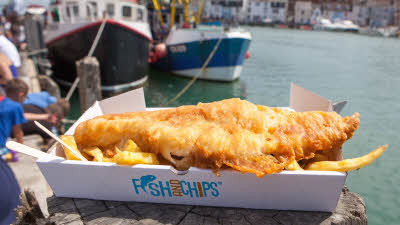 Fish and Fritz, Weymouth, large cod & chips